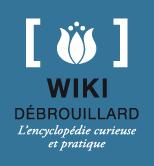 logo-wiki-ptidebs